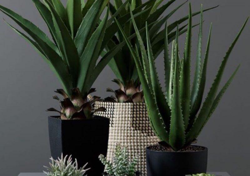 Pynt opp med kunstige planter